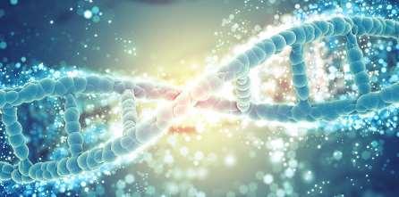 Identificazione delle mutazioni di EGFR